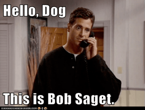 Hello, Dog  This is Bob Saget.