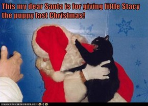 This my dear Santa is for giving little Stacy the puppy last Christmas!