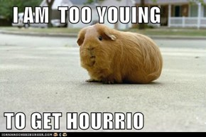 I AM  TOO YOUING  TO GET HOURRIO