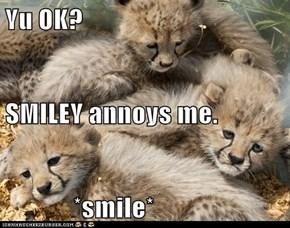 Yu OK? SMILEY annoys me.              *smile*