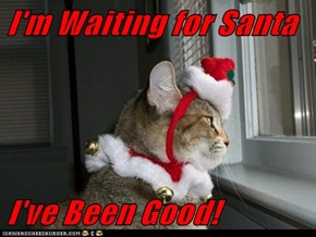 I'm Waiting for Santa  I've Been Good!