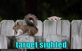 target sighted