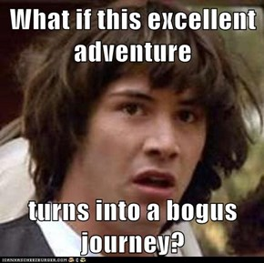 What if this excellent adventure  turns into a bogus journey?