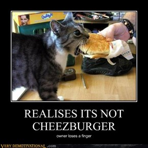 REALISES ITS NOT CHEEZBURGER