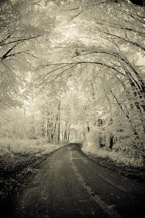 Frozen Road, Hartberg, Austria