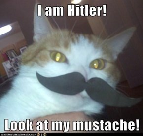I am Hitler!  Look at my mustache!