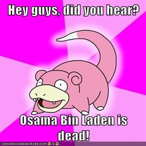 Hey guys, did you hear?  Osama Bin Laden is dead!