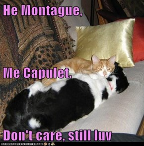 He Montague, Me Capulet. Don't care, still luv