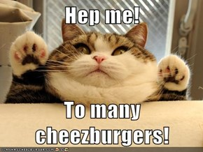 Hep me!  To many cheezburgers!