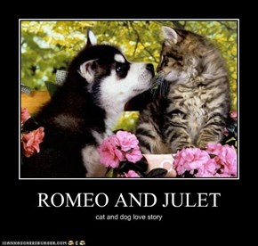 ROMEO AND JULET