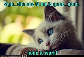 Sigh...The one Ai luv is gone...gone..   gone to work!
