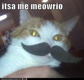 itsa me meowrio