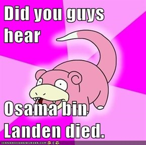 Did you guys hear  Osama bin Landen died.