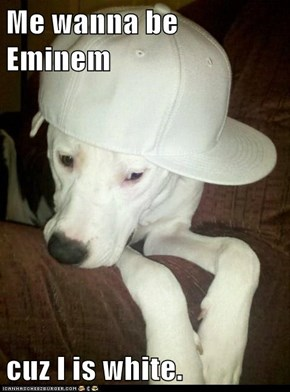 Me wanna be Eminem  cuz I is white.