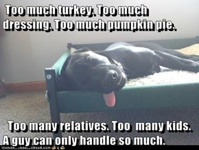 Too much turkey. Too much  dressing. Too much pumpkin pie.    Too many relatives. Too  many kids. A guy can only handle so much.