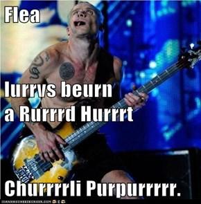 Imma Play Undurrrrr teh Burrrrridge