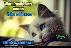 Sunbeams and Calm