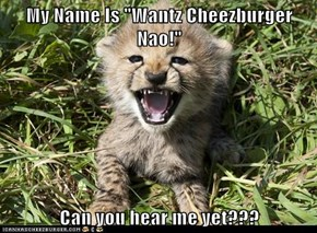 "My Name Is ""Wantz Cheezburger Nao!""  Can you hear me yet???"