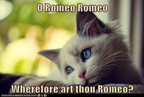 O Romeo Romeo  Wherefore art thou Romeo?