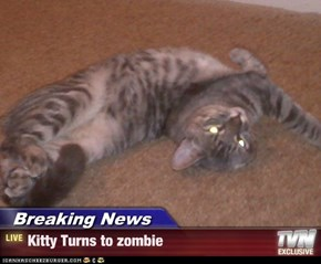 Breaking News - Kitty Turns to zombie