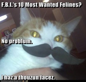 F.B.I.'s 10 Most Wanted Felines? No problum. I haz a thouzun facez.