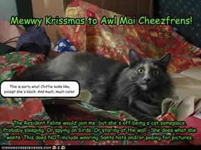 Krissmas Greetings from Kwithie