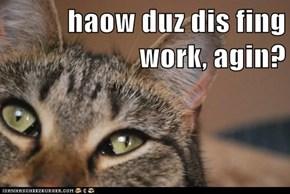haow duz dis fing work, agin?