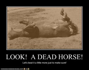 LOOK!  A DEAD HORSE!