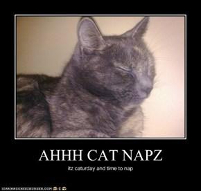 AHHH CAT NAPZ