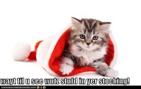 wayt til u see wutz stufd in yer stocking!