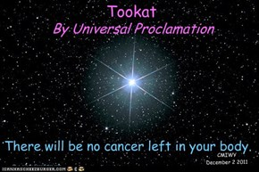Message to Tookat from The Universe