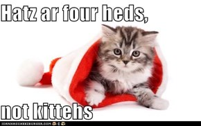 Hatz ar four heds,   not kittehs