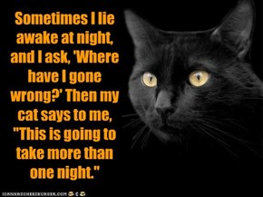 "Sometimes I lie awake at night, and I ask, 'Where have I gone wrong?' Then my cat says to me, ""This is going to take more than one night."""