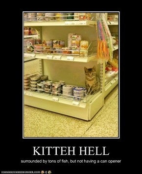KITTEH HELL