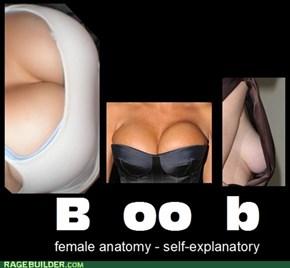 B+oo+b