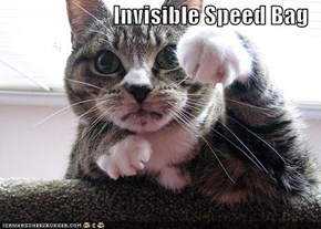 Invisible Speed Bag