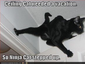 Ceiling Cat needed a vacation.    So Ninja Cat stepped up.