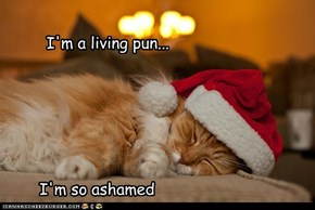 Kitty does not find this punny.