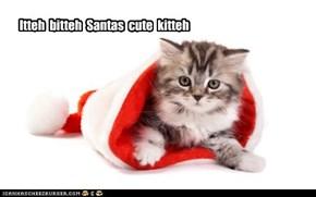 Watching over Santas hat