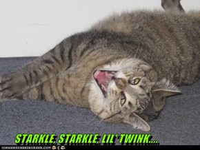 STARKLE, STARKLE, LIL' TWINK....