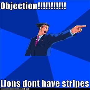 Objection!!!!!!!!!!!  Lions dont have stripes