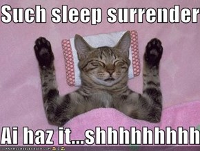 Such sleep surrender  Ai haz it...shhhhhhhhhh