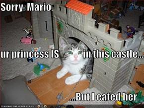 Sorry, Mario,