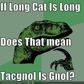 If Long Cat Is Long Does That mean Tacgnol Is Gnol?