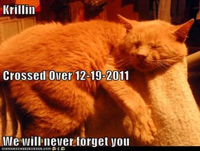Krillin Crossed Over 12-19-2011 We will never forget you