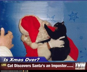 Is Xmas Over? - Cat Discovers Santa's an Imposter......
