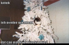 kitteh teh ownlee ornament dat can maeks or braeks a tree