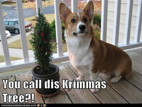 You call dis Krimmas Tree?!