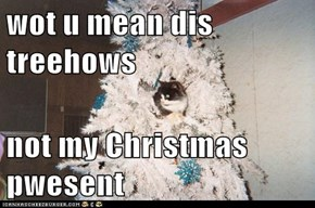 wot u mean dis treehows  not my Christmas pwesent