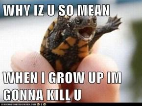 WHY IZ U SO MEAN  WHEN I GROW UP IM GONNA KILL U